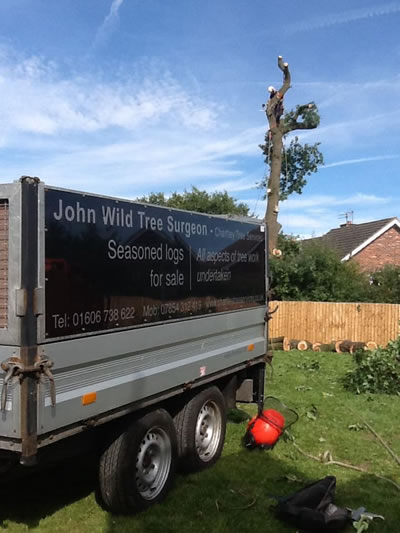 Chartley Tree Services of Cheshire